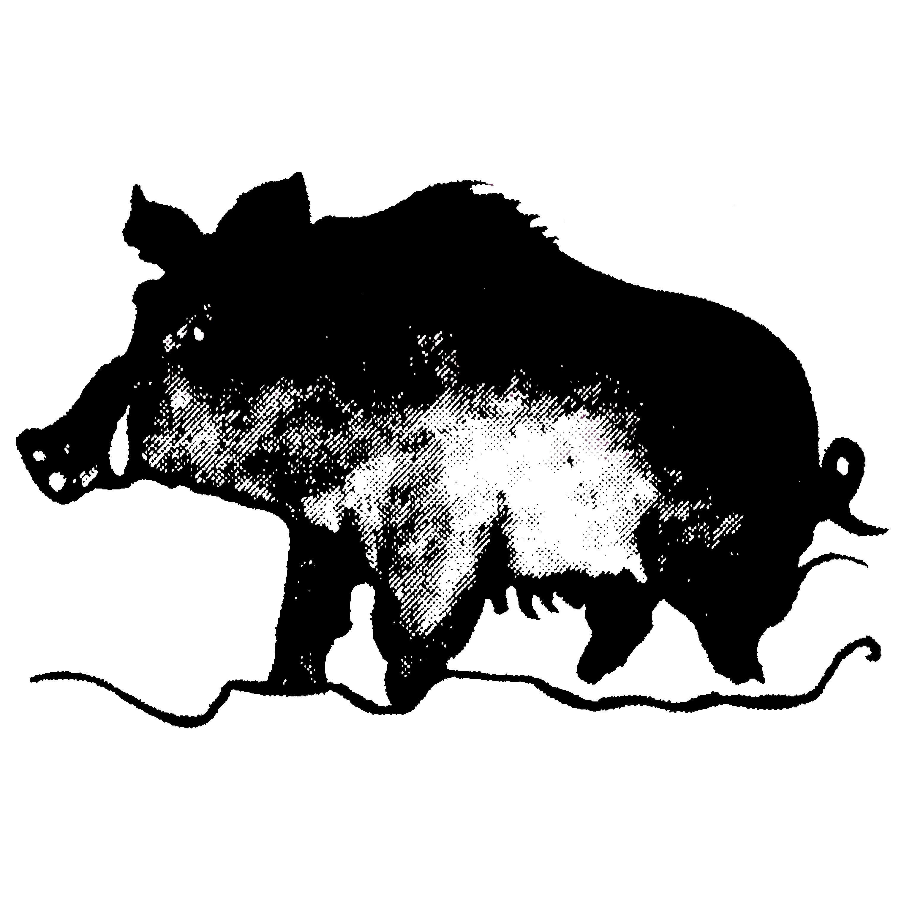 Wildschweinweg
